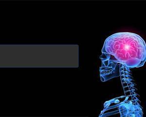 Plantilla de Cerebro para PowerPoint PPT Template